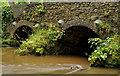 J3268 : The muddy Minnowburn, Belfast (2012) by Albert Bridge