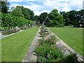 TQ3079 : Terrace of the rose garden, Lambeth Palace Gardens by Marathon