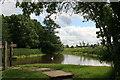 SJ4552 : Millpond, Stretton Mill by Chris Allen