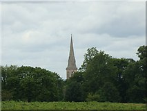 TQ1873 : View of the St Matthias Church, Kings Road from Richmond Park #2 by Robert Lamb