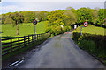 SD4867 : Bolton Lane, Bolton-le-Sands by Ian Taylor