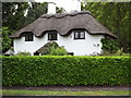 TQ2165 : Thatched Roof by Colin Smith