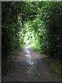 SP8431 : Milton Keynes Boundary Walk by Philip Jeffrey