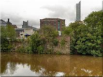 SJ8298 : River Irwell, Salford by David Dixon