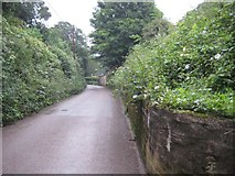 SS9412 : Bakers Hill, Tiverton by Emma White
