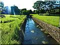 NZ0371 : Whittle Dene Watercourse, Matfen by Alexander P Kapp