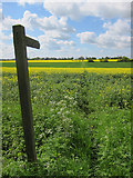 TL6344 : Footpath to Castle Camps by Hugh Venables