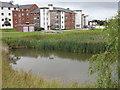 SU9649 : Manor Park, University of Surrey by Colin Smith