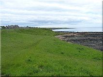 NO6006 : The Fife Coast path near Crail by Richard Law