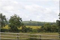SU5894 : Looking at Brightwell Barrow by Bill Nicholls