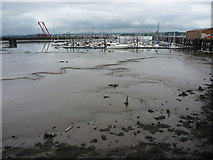 NT1278 : South Queensferry Townscape : Two Witches Lost In The Mud at Port Edgar by Richard West
