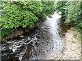 SO0602 : River Taff downstream from Pont Rhun, Troedyrhiw by Jaggery
