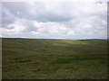 NY5706 : Knot Moss, Birkbeck Fells Common by Karl and Ali