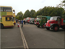 SD5422 : Leyland Transport Festival by David Dixon
