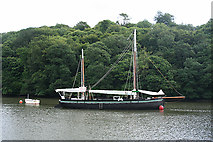 SX4268 : Calstock: the Tamar at Cothele by Martin Bodman
