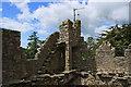 T0314 : Castles of Leinster: Rathmacknee, Wexford (2) by Mike Searle