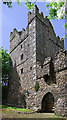 T0314 : Castles of Leinster: Rathmacknee, Wexford (3) by Mike Searle