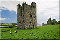 S8412 : Castles of Leinster: Black Castle, Clonmines, Wexford by Mike Searle