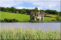 S9827 : Castles of Leinster: Deeps, Wexford (2) by Mike Searle