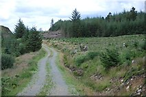 NR9088 : Forestry road by Patrick Mackie