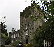 S3340 : Castles of Munster: Killaghy, Tipperary (1) by Mike Searle