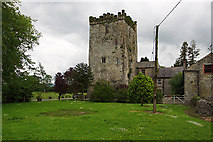 S3340 : Castles of Munster: Killaghy, Tipperary (2) by Mike Searle