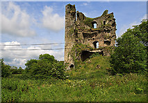 S3813 : Castles of Munster: Clonea, Waterford (2) by Mike Searle