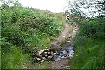 NR4655 : Ford across Allt an t-Sidhein, Islay by Becky Williamson