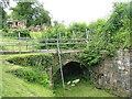 NS7353 : Cadzow Castle entrance bridge by M J Richardson
