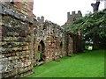 SJ5301 : South side, Acton Burnell Castle by Christine Johnstone