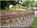 SY0887 : Churchyard wall, Colaton Raleigh by Derek Harper