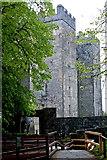 R4560 : Bunratty Folk Park - Walkway to Site #4 - Castle by Joseph Mischyshyn
