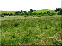H5115 : Tullynacross Townland by Kenneth  Allen