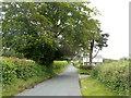 SO3003 : Old Abergavenny Road climbs towards the centre of Mamhilad by Jaggery