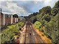 TQ5840 : Rail track viewed from Grosvenor Bridge by Paul Gillett