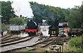SJ9744 : Foxfield Railway - crane tank demonstration by Chris Allen