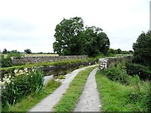N2925 : Aqueduct on the Grand Canal in Ballycowan, Co. Offaly. by JP