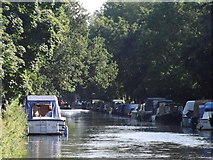 TQ0562 : Wey Navigation, New Haw by Colin Smith