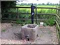 SJ4664 : Village Pump, Waverton by Jeff Buck