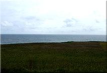 NT9955 : Coastal grazing near Berwick by JThomas