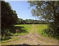 ST5938 : Field, Glastonbury Festival site by Derek Harper