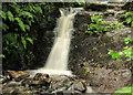 J3179 : Waterfall near the Cave Hill, Belfast by Albert Bridge