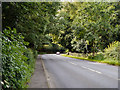 SD7534 : Whalley Road (A671) by David Dixon