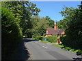 SU9372 : Hatchet Lane by Alan Hunt