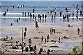 SX5148 : Wembury : Wembury Beach by Lewis Clarke