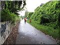 W7171 : Cyclist approaching former Blackrock Station by David Hawgood