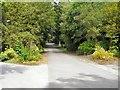 SJ9594 : Hyde Cemetery by Gerald England