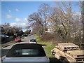SX8375 : Southeast end of Old Newton Road, Heathfield by Robin Stott
