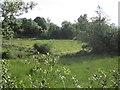 G8840 : Small fields north of Manorhamilton by Richard Webb