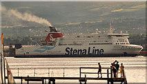 "J3778 : The ""Stena Superfast VII"", Belfast Lough by Albert Bridge"